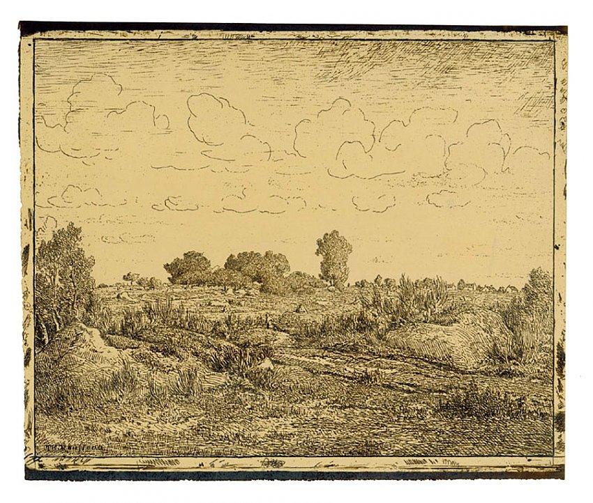 Pierre-Etienne- Théodore Rousseau<br />La Plaine de la Plante-à-Biau<br />1862<br />salt print<br />9 3/4 x 11 7/8 inches<br />24.8 x 30.1 cm<br />