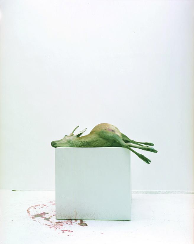 ERIC POITEVIN<br />Sans titre<br />2006<br />c-print<br />89 3/4 x 70 7/8 inches<br />  (228 x 180 cm)<br />
