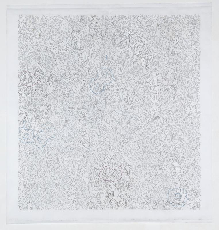 Alex Hay<br />Proto Zero 10<br />2010<br />colored pencil and graphite on cotton velum<br />57 3/8 x 54 1/8 inches<br />(145.7 x 137.5 cm)<br />PF2028<br />
