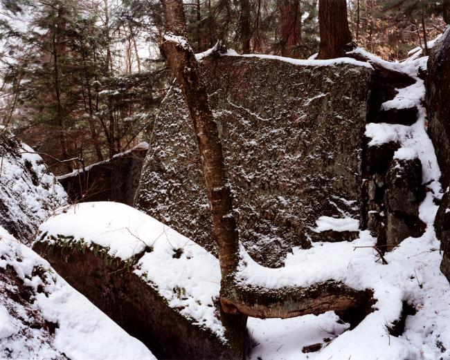 JOSEPH BARTSCHERER<br /><i>Spring Ravine, 2002</i><br />Color print<br />framed: 60 x 74.02 inches (152,4 x 188) cm<br />Edition 1/5<br />