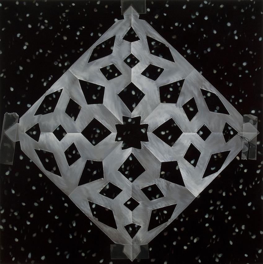 CATHERINE MURPHY<br /><i>Snowflakes</i><br />2011<br />oil on canvas<br />52 x 52 inches (132.1 x 132.1 cm)<br />
