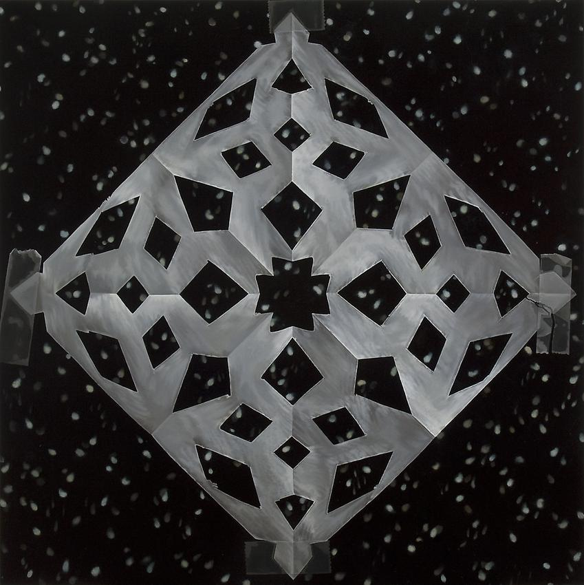 Catherine Murphy<br />Snowflakes<br />dedicated to Joyce Robins<br />2011<br />oil on canvas<br />52 x 52 inches<br /> (132 x 132 cm)<br />