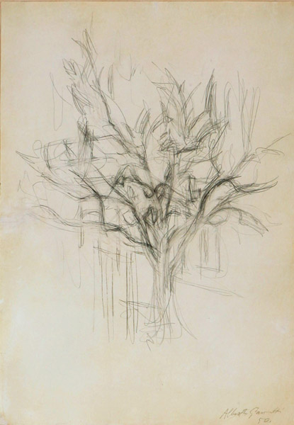 Alberto Giacometti&lt;br /&gt;Arbre&lt;br /&gt;1950&lt;br /&gt;graphite on paper&lt;br /&gt;19 3/8 x 13 1/2 inches (49.2 x 34.2 cm)&lt;br /&gt;