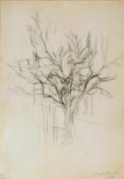 ALBERTO GIACOMETTI  (1901-1966)<br /><i>Arbre</i><br />1950<br />graphite on paper<br />19 3/8 x 13 1/2 inches (49.2 x 34.2 cm)<br />
