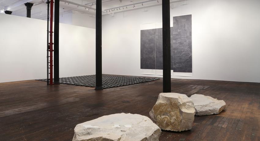 installation Lucy Skaer <i>Random House</i> 8 January - 21 February 2015<br />
