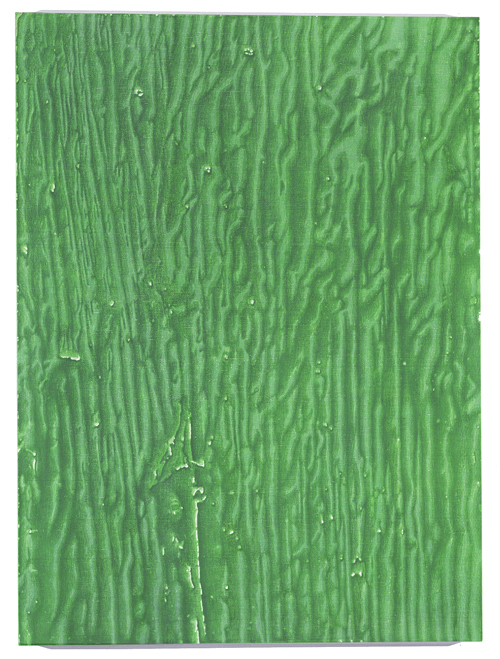Alex Hay<br />Old Green '05<br />2005<br />spray acrylic and stencil on linen<br />63 3/16 x 46 7/8 inches<br /> (160.5 x 119.06 cm)<br />