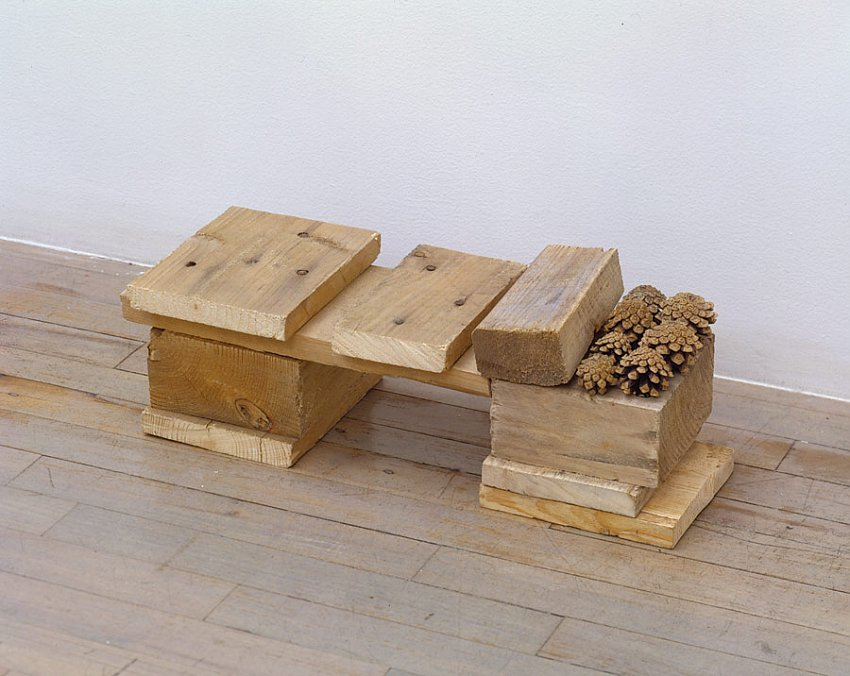Helen Mirra<br />Unirondack<br />	2006<br />	pallet wood, pine cones<br />	7 1/16 x 19 1/4 x 7 1/8 inches<br />	 (16 x 50 x 18 cm)<br />