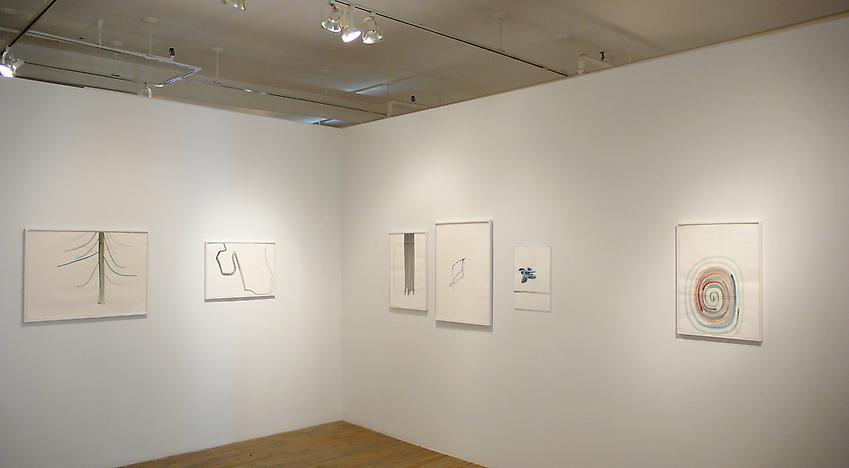 Silvia Bächli: Fjall<br />Installation<br />