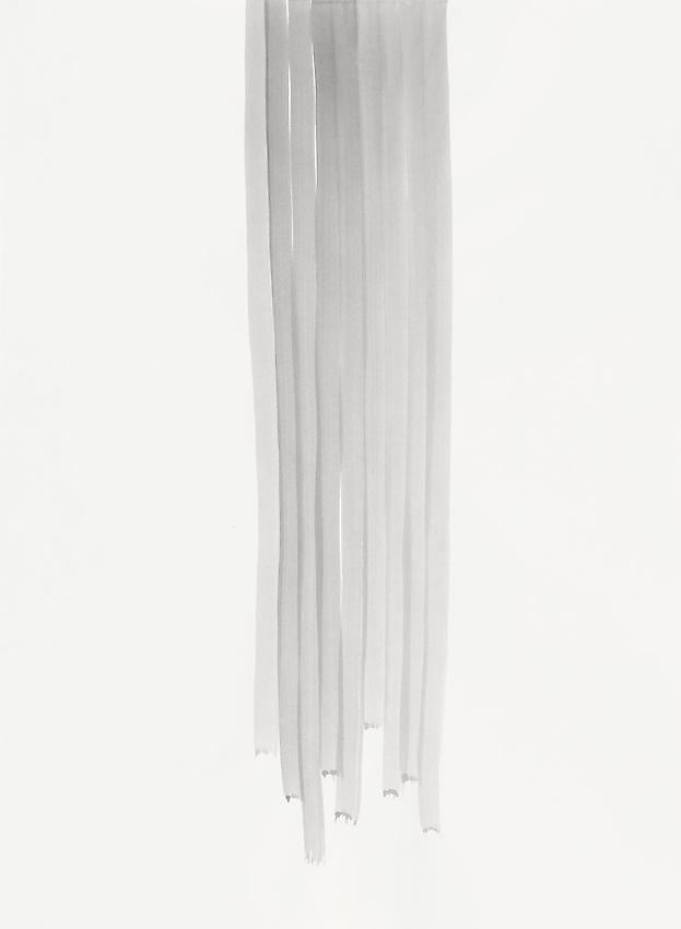 Silvia Bächli<br />Untitled<br />2010<br />gouache on paper<br />29 1/2 x 21 5/8 inches (75 x 55 cm) <br />PF1973<br />