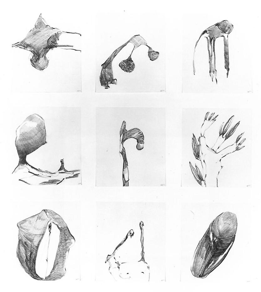 Group #52 1999 set of 9 drawings, graphite on paper 32 x 28 inches/81.3 x 71.1 cm