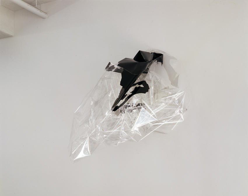 Seth Price: Untitled 2005 eyelets, plastic inks, archival mylar film dimensions variable
