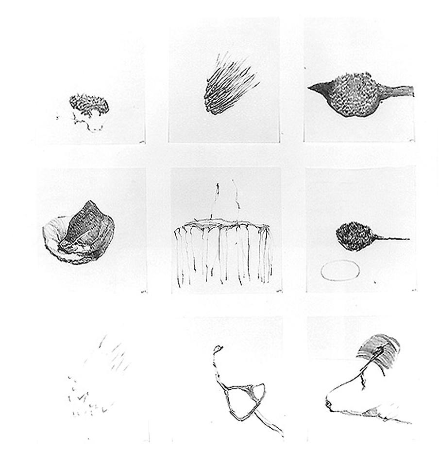 Group #57 1999 set of 9 drawings, graphite on paper 32 x 28 inches/81.3 x 71.1 cm