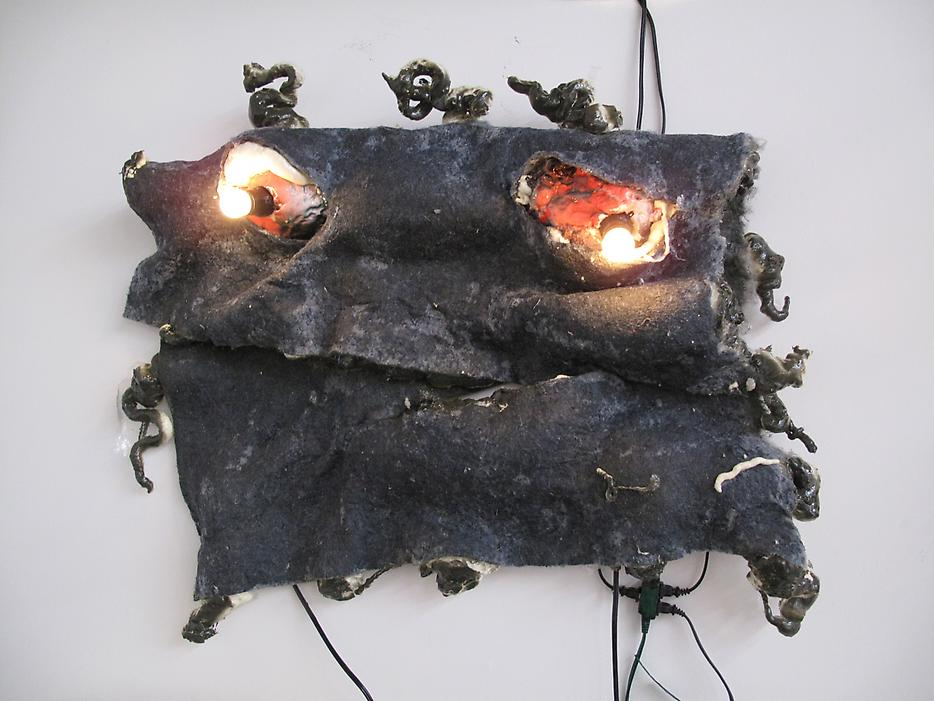 <i>Blanket</i> 2009 Mixed media Approx. 30 x 37 x 7 inches