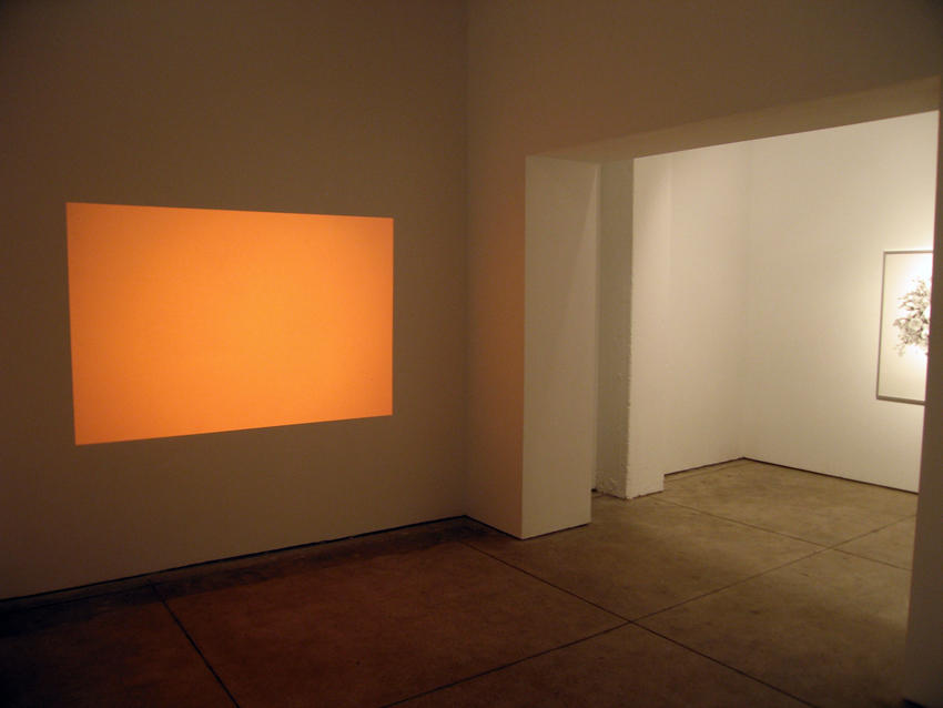 de Rijke/de Rooij Installation view Friedrich Petzel Gallery 2006