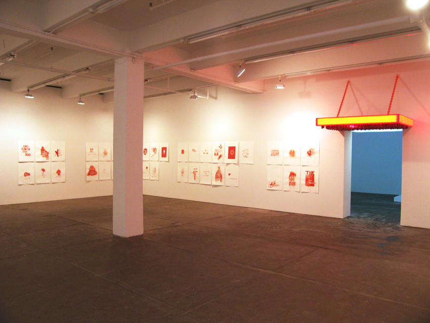 Suicide in Vermillion Sands Friedrich Petzel Gallery Installation 2008