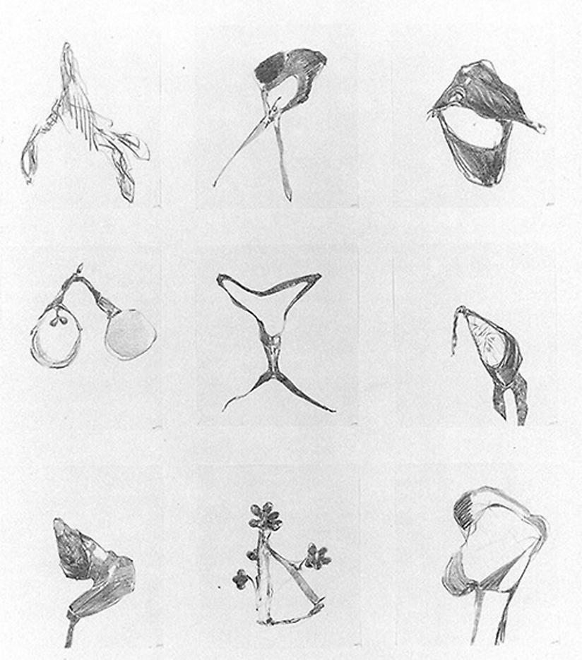 Group #59 1999 set of 9 drawings, graphite on paper 38 x 28 inches/81.3 x 71.1 cm