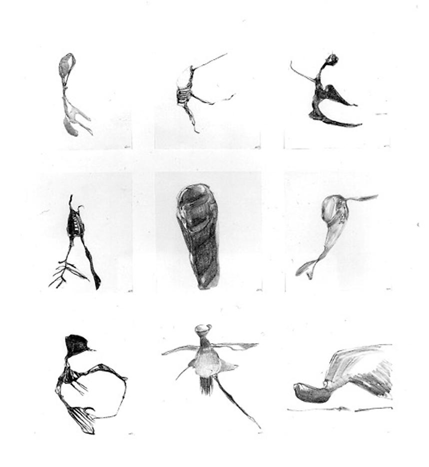 Group #54 1999 set of 9 drawings, graphite on paper 32 x 28 inches/81.3 x 71.1 cm