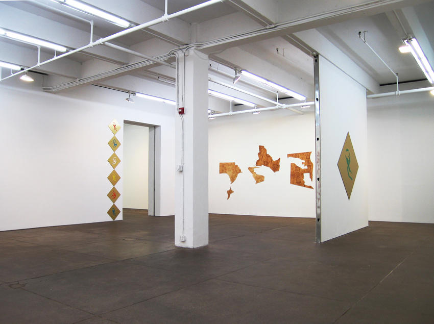 Seth Price Friedrich Petzel Gallery  Installation 2008