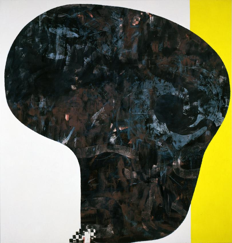 Charline von Heyl <i>Skull</i> 2012 Acrylic, oil, charcoal, and dry pigments on canvas 82 x 74 inches 208.3 x 188 cm