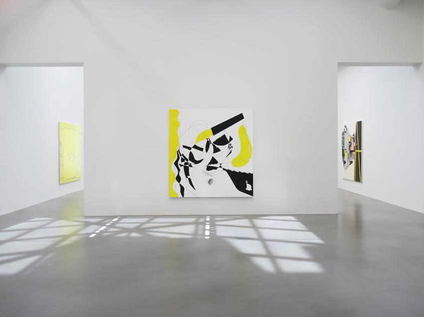 Charline von Heyl Installation view 10 2013