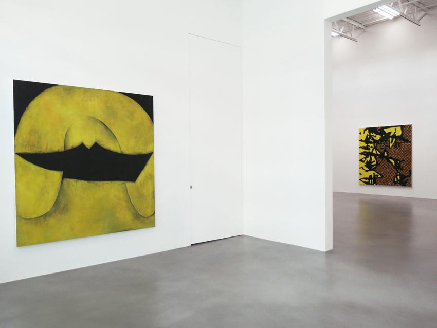 Charline von Heyl Installation view 1 2013