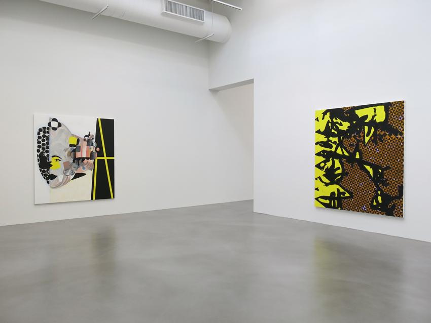 Charline von Heyl Installation view 2 2013