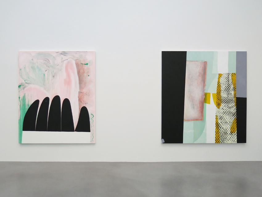 Charline von Heyl Installation view 4 2013