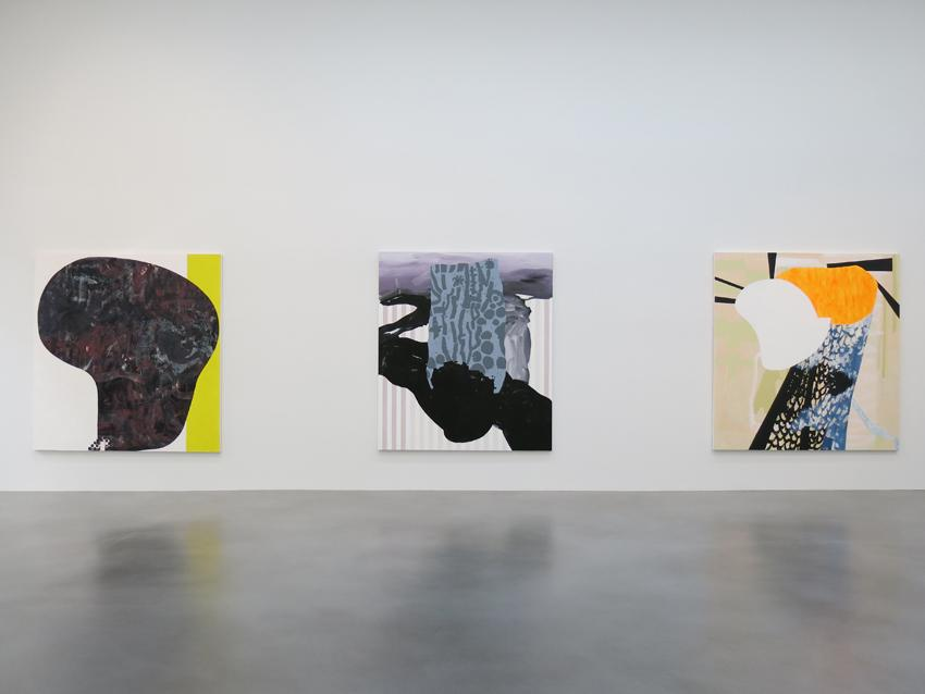 Charline von Heyl Installation view 5 2013