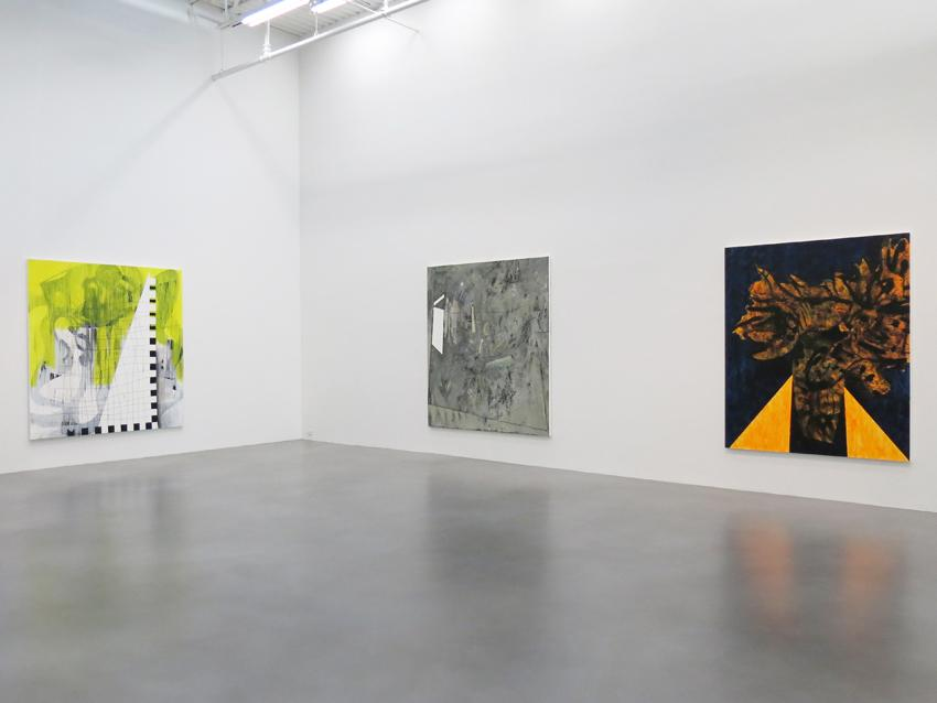 Charline von Heyl Installation view 8 2013