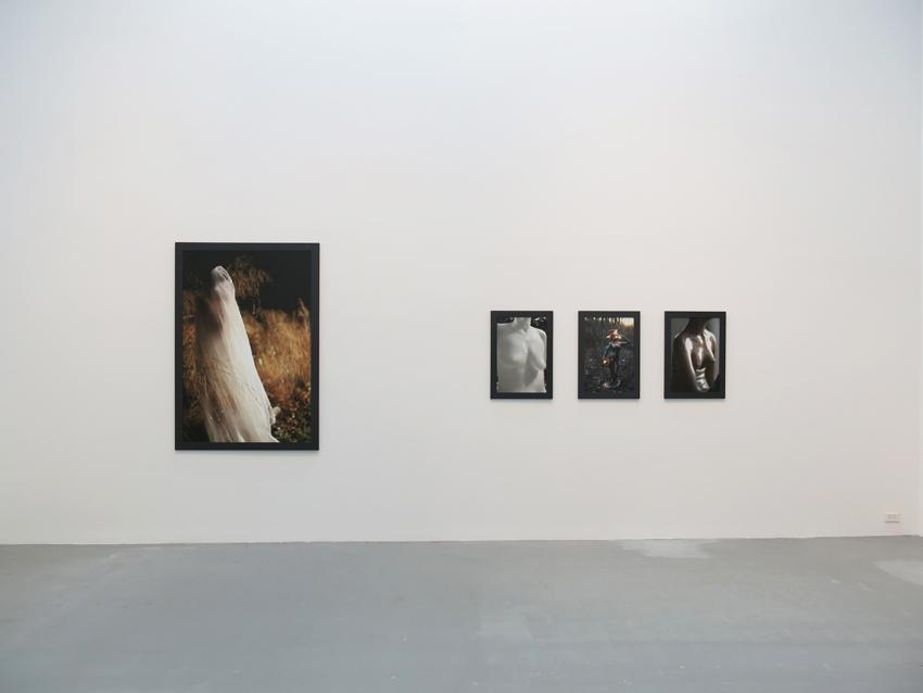 Dana Hoey Installation view 3 2013