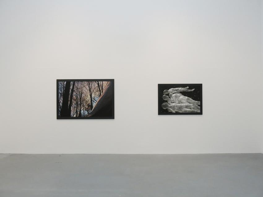 Dana Hoey Installation view 5 2013