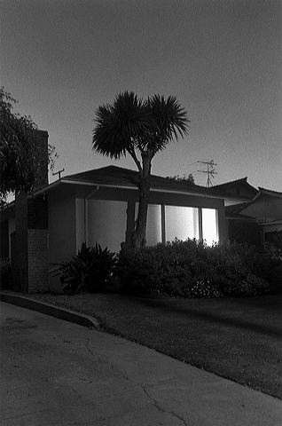Henry Wessel <i>Night Walk No. 39</i> 1995 Gelatin silver print 17 7/8 x 12 1/4 inches