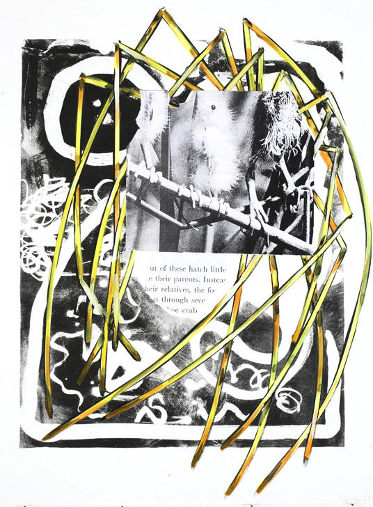 Untitled 2007 litho, water color, collage on paper 30.125 x 22.5 inches/76.5 x 57.2 cm