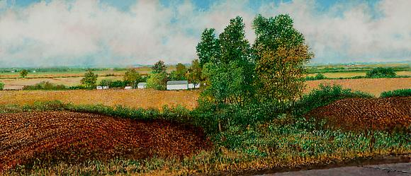 Illinois Landscape #226, 2010 Oil and acrylic on canvas 18 x 42 in. 46 x 108 cm