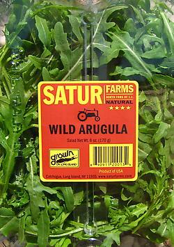 Wild Arugula