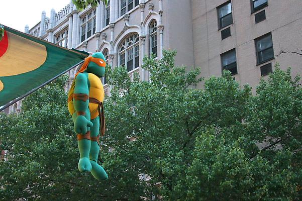 Liza Berfkoff Hanging TMNT (stuffed turtle), 2009 archival pigment print 16 x 24 inches Image