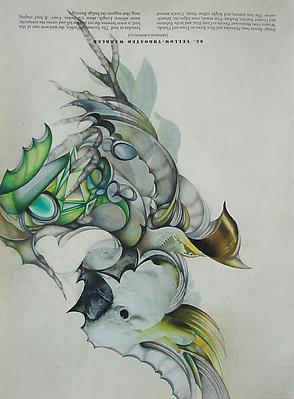 Audubon Drawing Series 85, 2010 mixed media on paper 12 1/4 x 9 inches Image