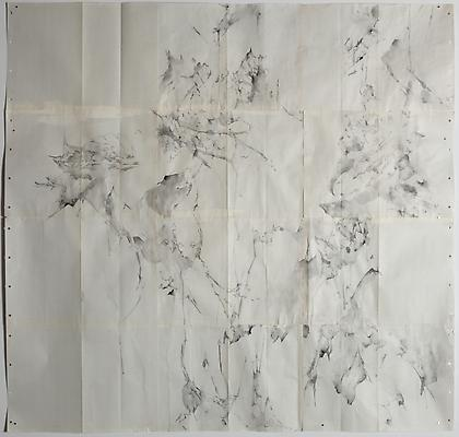 Trailing, 2012 Graphite and watercolor on blueprint 41 x 47 inches  Photo by Maurene Cooper Image