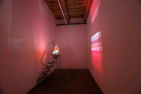Rosy Fingered Dawn, 2013 Stair ladder, overhead projector, file rack, clipboards Dimensions variable  Photo: Clare Britt Image