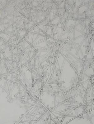 Lattice, 2012 Graphite on archival polyester film, mounted to wood panel 16 x 12 inches Image