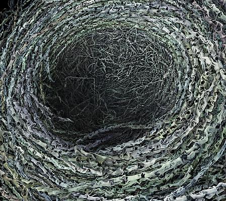 Ovum #3, 2013 Detail Image