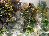 Kim Keever and David Maisel