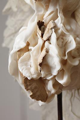 The Bride, 2012 Detail Metal, clay, lace, mushrooms, resin and wood 65 h. x 11 x 13 inches  Photo by Maurene Cooper Image