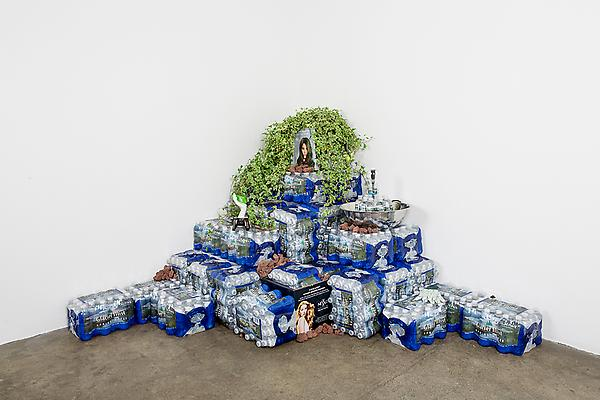 Glacier Mist, 2013 Bottled water, fountain, rotating display, ivy, lava rocks, hydrospike, and other artifacts 84 x 80 x 48 inches  Photo: Sara Condo Image
