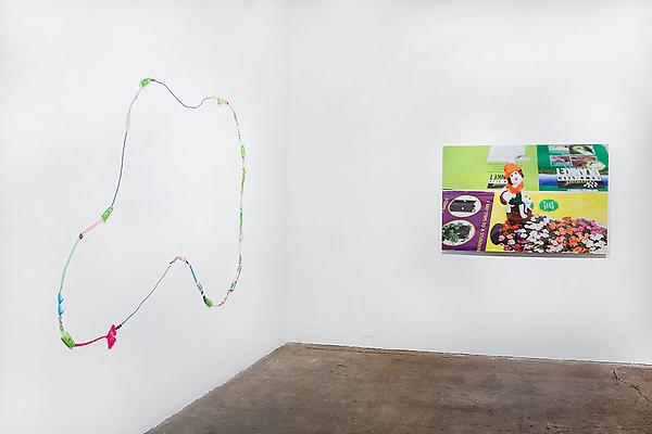 Carson Fisk-Vittori <i>Women Weed & Weather</i> Installation view, Carrie Secrist Gallery, Chicago  Photo: Sara Condo Image