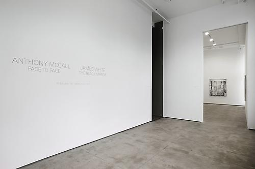 James White The Black Mirror February 16 - March 23, 2013 Photography: Jason Wyche, New York