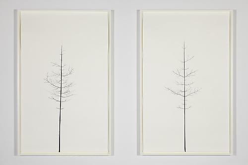 PETER LIVERSIDGE Winter Drawing (Summer Version), 30 vs. 31 Winter Drawing (Summer Version), 29 vs. 32, 2011 paper, black masking tape (diptych) paper: 94 1/2 x 59 3/8 inches (240 x 150.8 cm) each framed: 98 1/4 x 63 1/8 inches (249.6 x 160.3 cm) each signed, titled and dated by artist, verso PLi-48a,b