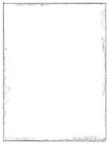 cinthia marcelle