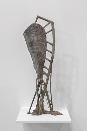 Pinna Nobilis C, 2017 bronze 57 x 17 x 12 cm