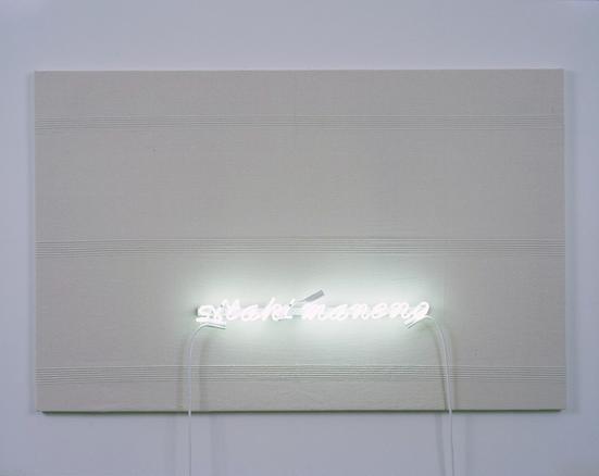 Sitaki Maneno 2006 fabric and neon lighting 94 x 145 x 2.5 cm